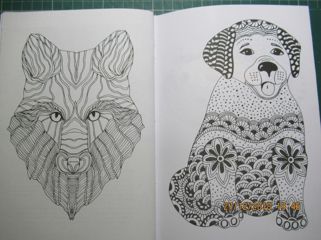 Deux petites revue de dessins  Img_2015
