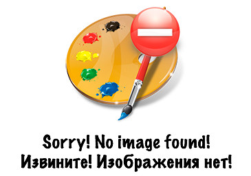 Расстояние и картинка между категориями (форумами) No_ima10