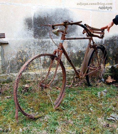 bicyclette Vieux_10