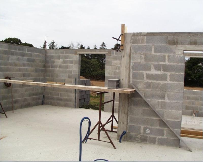 AUTO-CONSTRUCTION :  LA MAISON D'EN FACE - Page 4 Const156