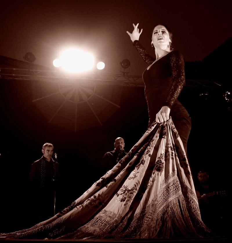 Gala flamenco Dsc03510