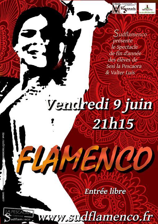 Gala flamenco Gl10