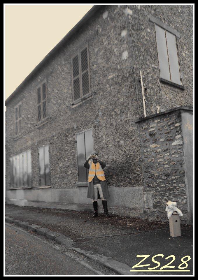 100ème Rendez-Vous de la Reine - Rambouillet le 19 février 2017 - Page 8 Img_2512