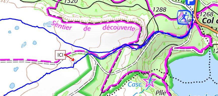 Fin d'après-midi sur le plateau du Guéry Captur10