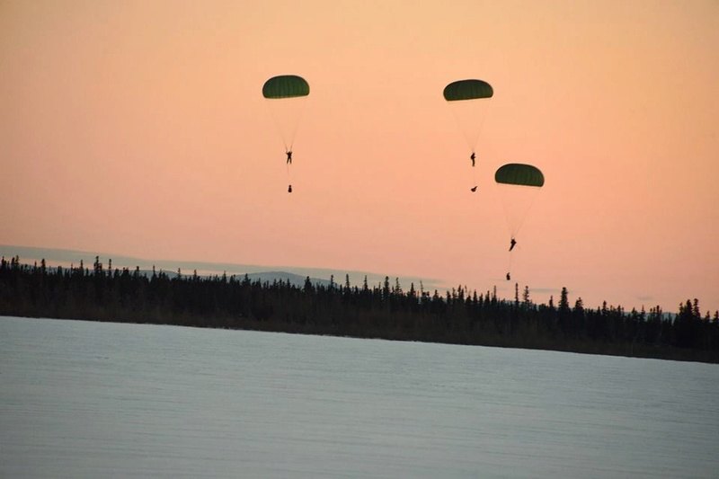 Armée canadienne/Canadian Armed Forces - Page 26 2014