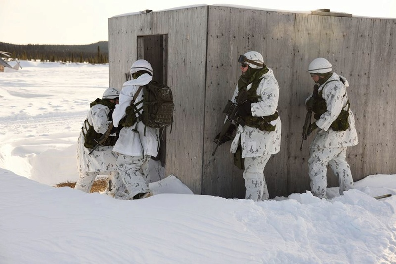 Armée canadienne/Canadian Armed Forces - Page 26 2113