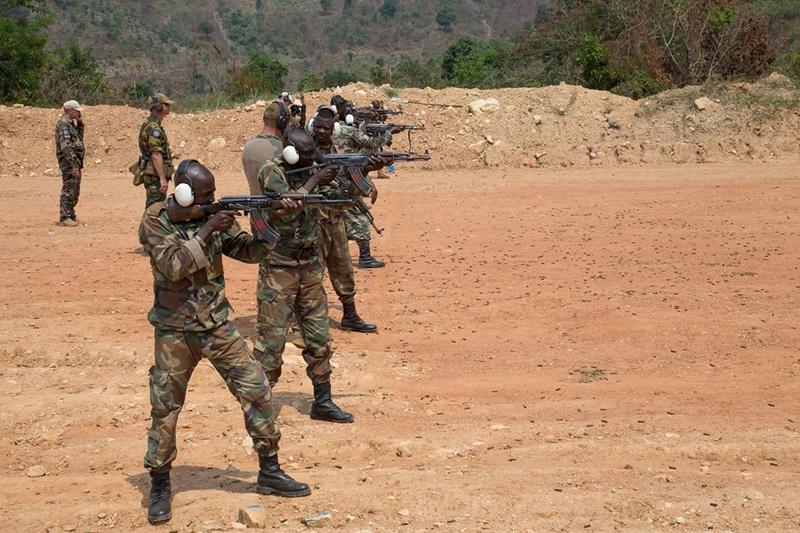 Armées de la République centrafricaine  - Page 3 2130