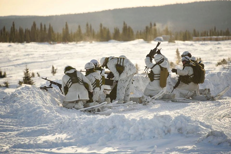 Armée canadienne/Canadian Armed Forces - Page 26 2610