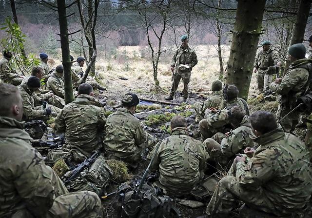 Armée Britannique/British Armed Forces - Page 4 4115