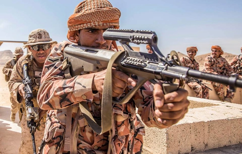 Armée Omanaise / Sultan of Oman's Armed Forces - Page 9 4330