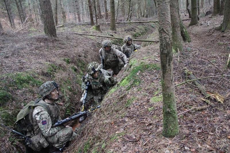 Armée Britannique/British Armed Forces - Page 4 4424