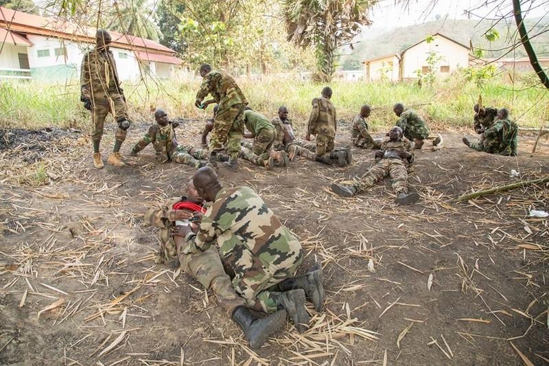 Armées de la République centrafricaine  - Page 3 44_210
