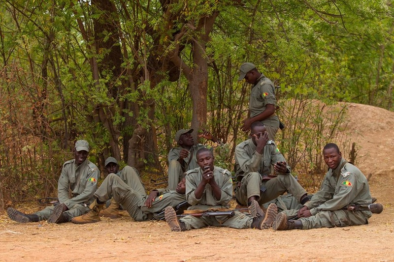 Armée Malienne / Armed and Security Forces of Mali - Page 14 5915
