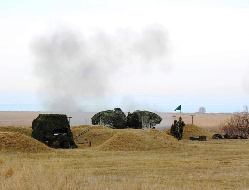 Armée Roumaine/Romanian Armed Forces/Forţele Armate Române - Page 10 6012