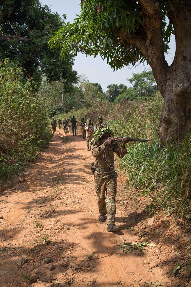 Armées de la République centrafricaine  - Page 3 6313