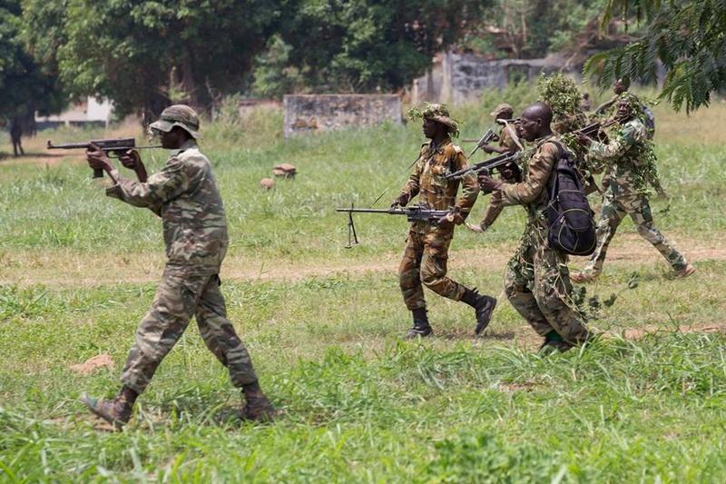 Armées de la République centrafricaine  - Page 3 6512