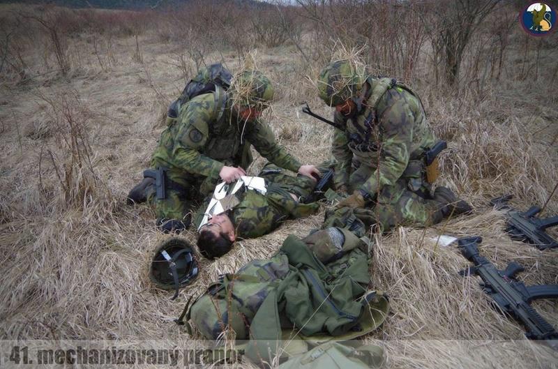 Armée tchèque/Czech Armed Forces - Page 9 6717
