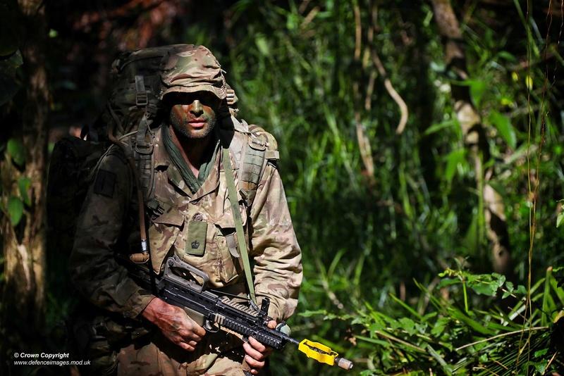 Armée Britannique/British Armed Forces - Page 5 7021
