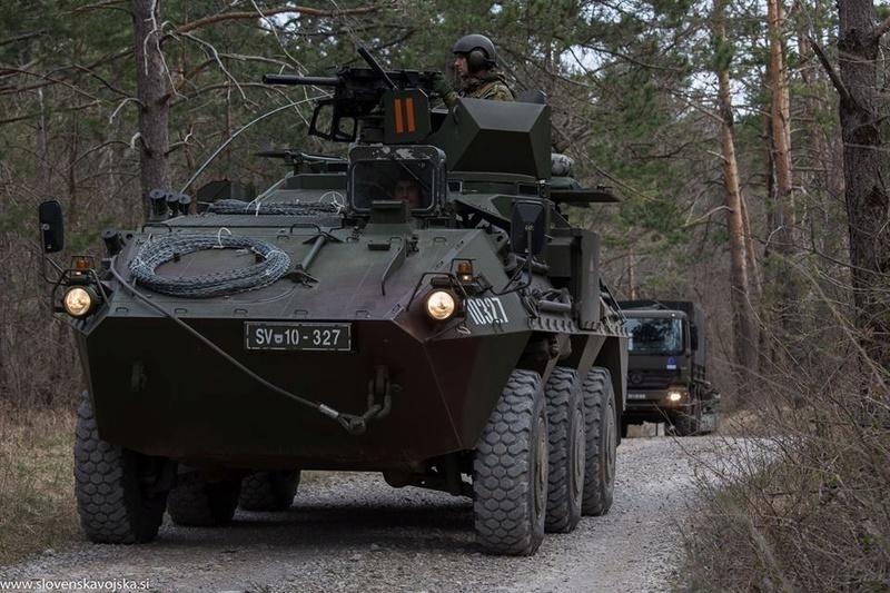 Slovenian Armed Forces / Slovenska vojska - Page 3 7265