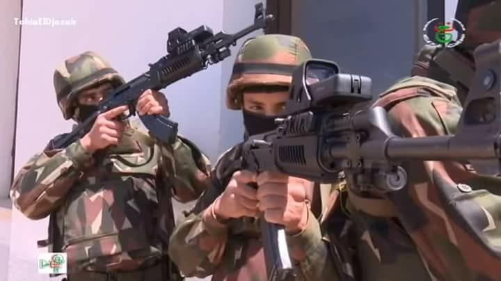 Armée Algérienne (ANP) - Tome XIV 7267