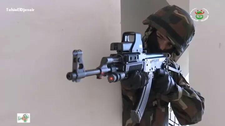 Armée Algérienne (ANP) - Tome XIV 7360