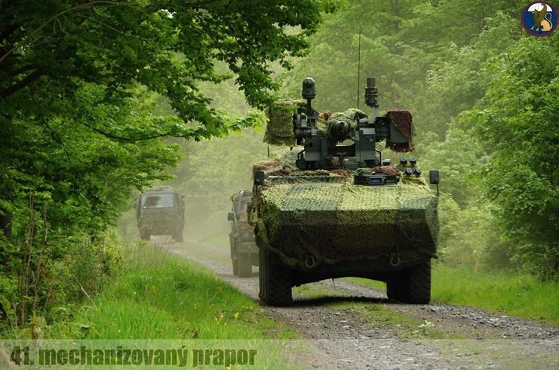 Armée tchèque/Czech Armed Forces - Page 9 8133