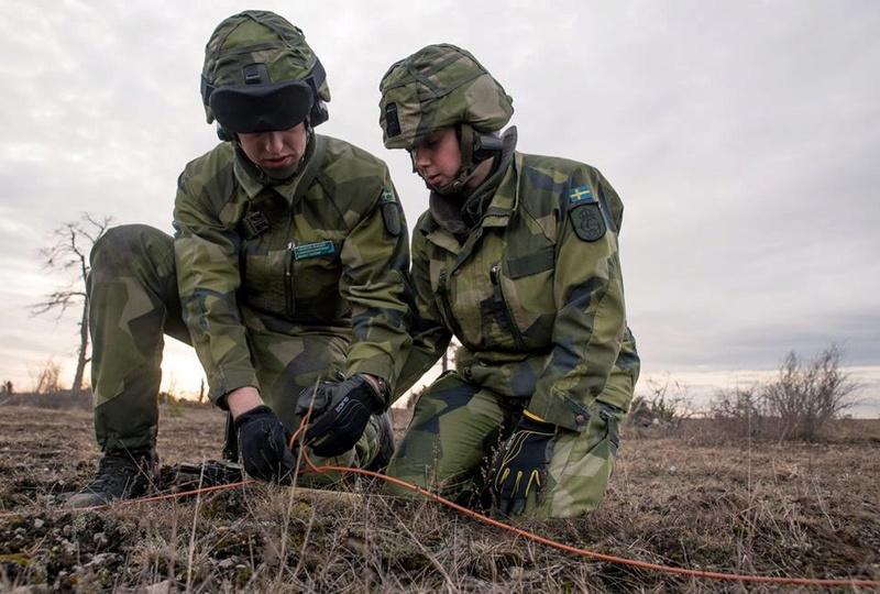Swedish Armed Forces/Försvarsmakten - Page 12 8316