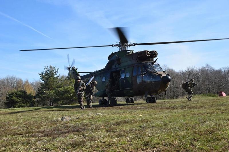 Armée Française / French Armed Forces 8422
