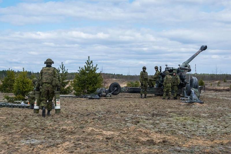 Armée Estonienne/Estonian Army - Page 3 8425