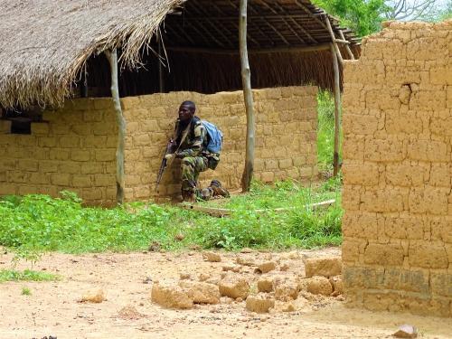 Armées de la République centrafricaine  - Page 3 8527