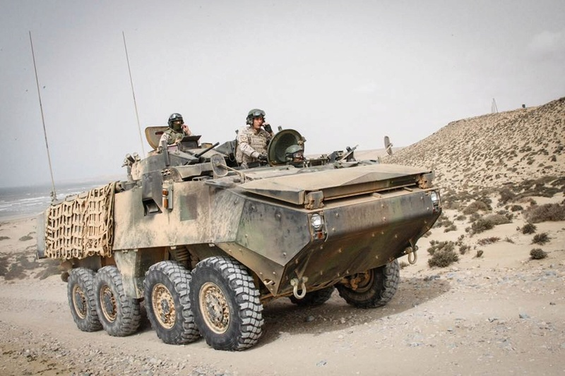 Armée Espagnole/Fuerzas Armadas Españolas 9022