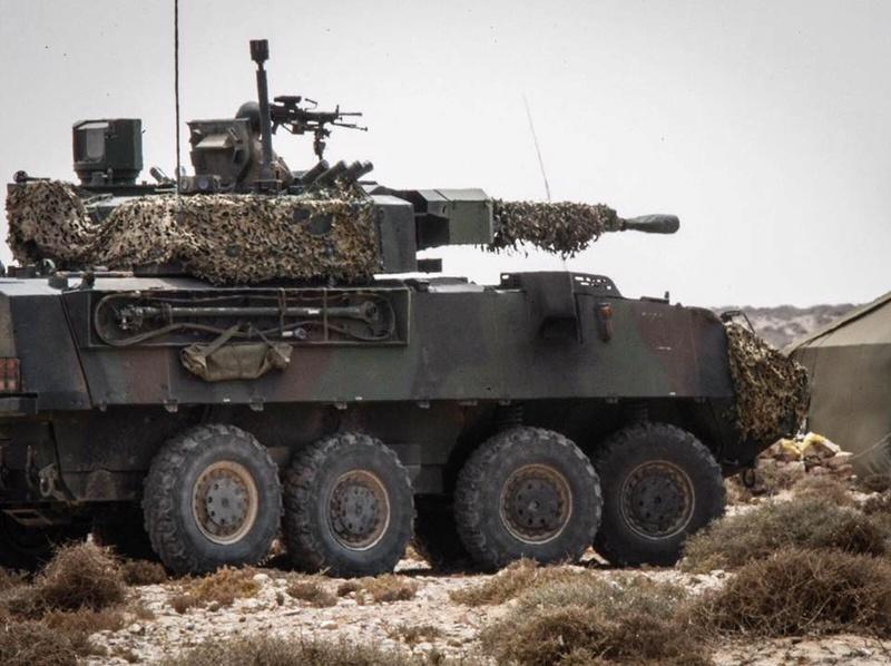 Armée Espagnole/Fuerzas Armadas Españolas 9117