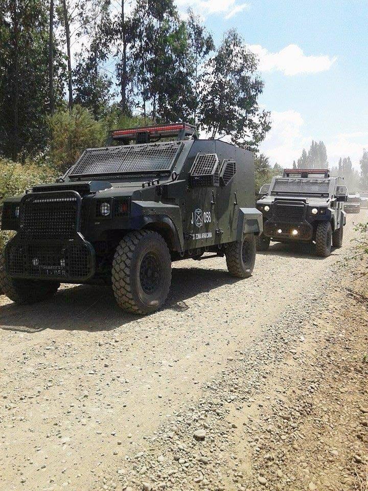 Armée Chilienne / Chile's armed forces / Fuerzas Armadas de Chile - Page 13 9136