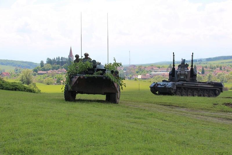 Armée Roumaine/Romanian Armed Forces/Forţele Armate Române - Page 10 9258