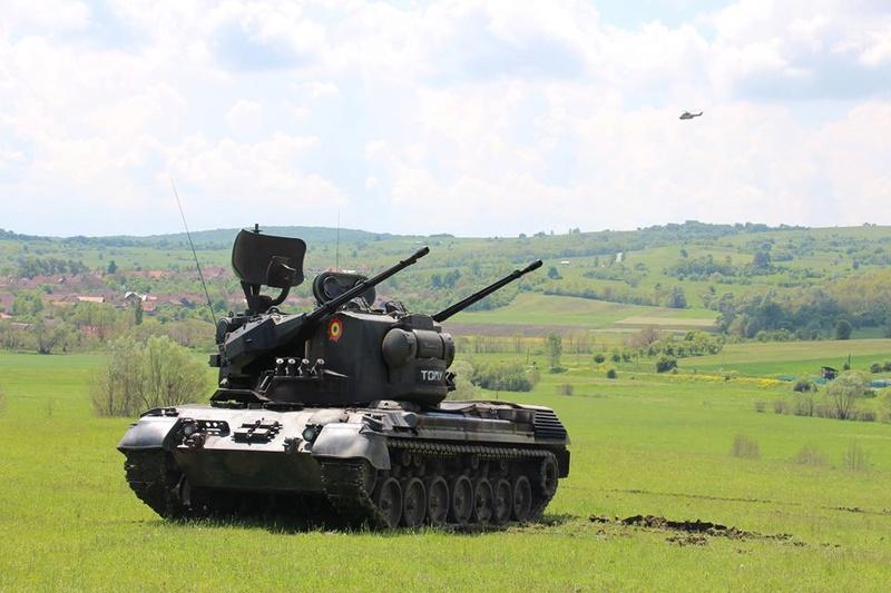 Armée Roumaine/Romanian Armed Forces/Forţele Armate Române - Page 10 98c12