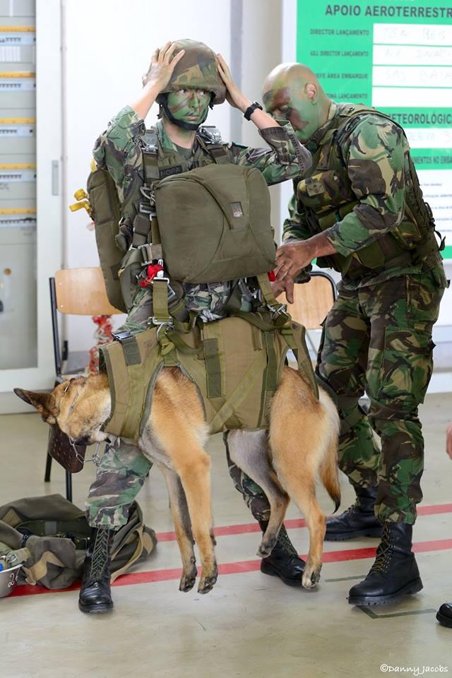 Forças Armadas Portuguesas/Portuguese Armed Forces - Page 9 98c22