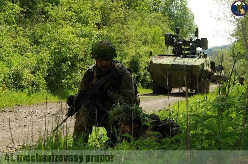 Armée tchèque/Czech Armed Forces - Page 9 98d14