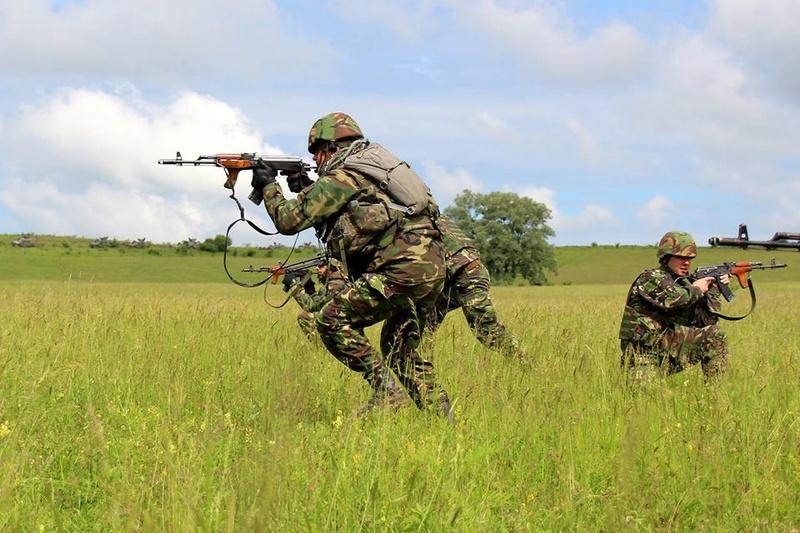 Armée Roumaine/Romanian Armed Forces/Forţele Armate Române - Page 10 98f29