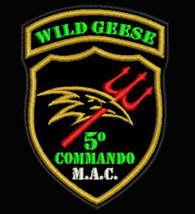 WILD  GEESE  21/5/17 Sin-ty11