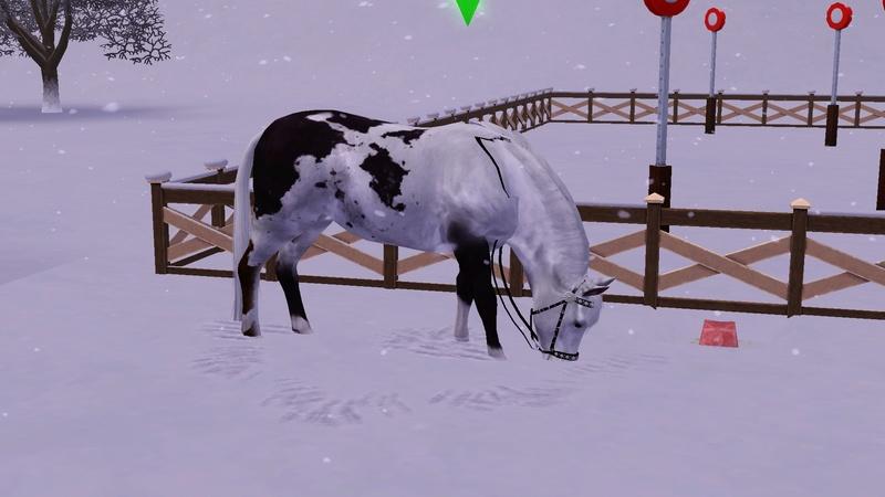 """[Challenge] Teens and Horses """"Sims 3"""" raconté par Vavaveau Screen10"""