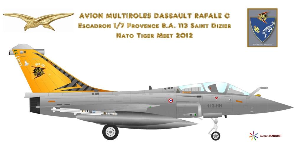 Avions de l'Aéronavale et autres - Page 2 Rafale11