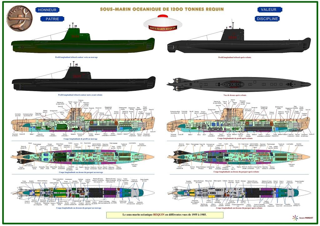 Mes profils de bateaux gris... et les autres. - Page 2 Requin10
