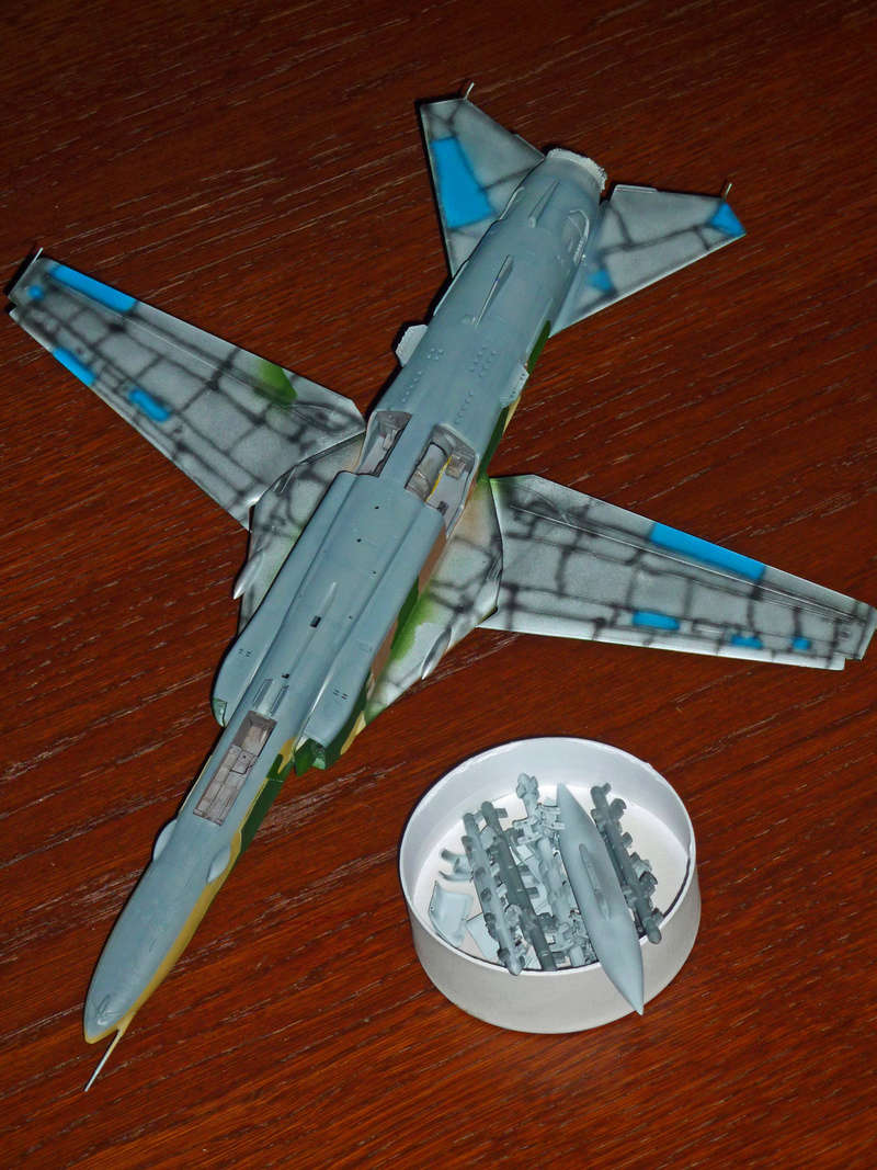 """MiG-27 """"Flogger-D""""; Trumpeter 1/48 - Page 3 P1100120"""