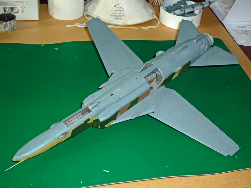 """MiG-27 """"Flogger-D""""; Trumpeter 1/48 - Page 3 P1100211"""