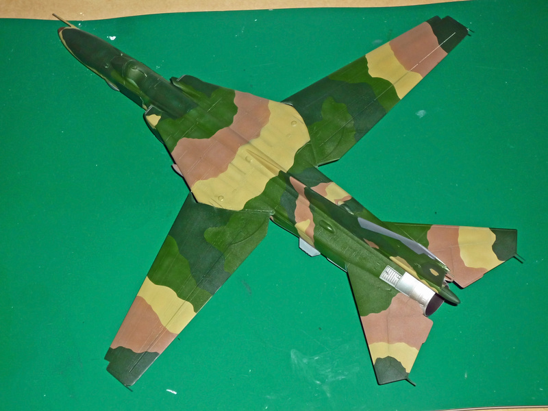 """MiG-27 """"Flogger-D""""; Trumpeter 1/48 - Page 3 P1100218"""