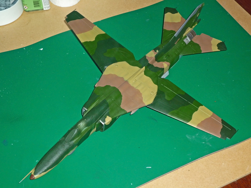 """MiG-27 """"Flogger-D""""; Trumpeter 1/48 - Page 3 P1100220"""