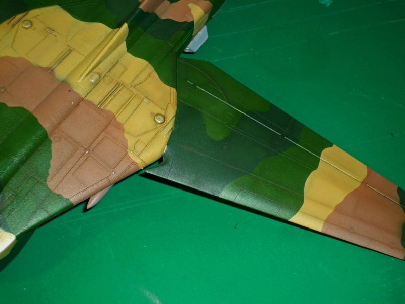 """MiG-27 """"Flogger-D""""; Trumpeter 1/48 - Page 3 P1100222"""