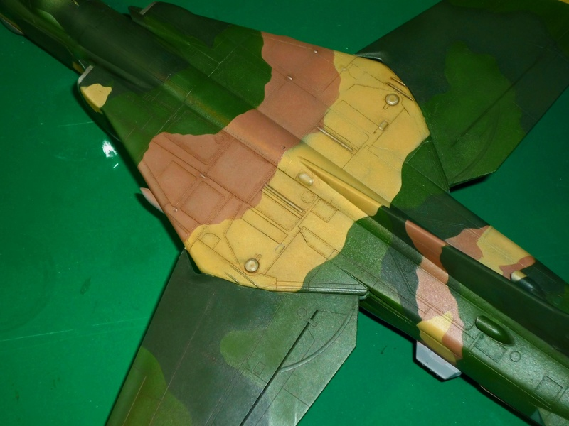 """MiG-27 """"Flogger-D""""; Trumpeter 1/48 - Page 3 P1100224"""