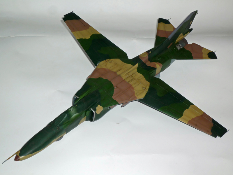 """MiG-27 """"Flogger-D""""; Trumpeter 1/48 - Page 3 P1100225"""