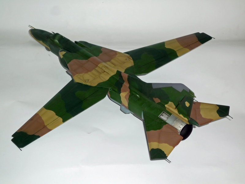 """MiG-27 """"Flogger-D""""; Trumpeter 1/48 - Page 3 P1100226"""